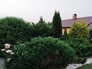 Купить дом, Пинск, 1-ая Садовая, 12 соток, площадь 100 м2 Пинск